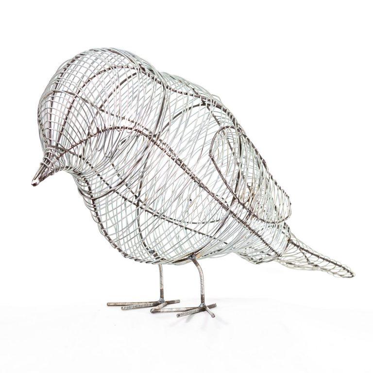 Birds-29