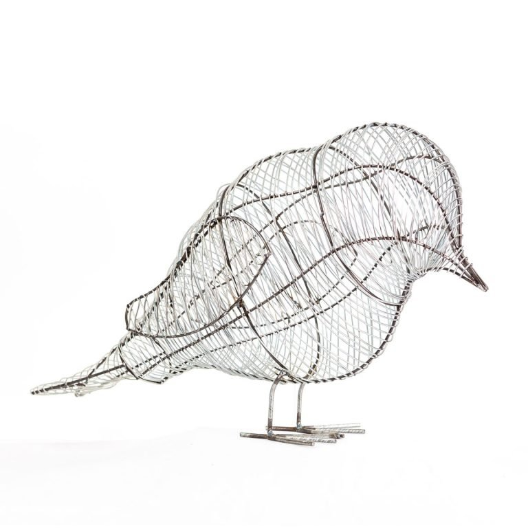 Birds-31